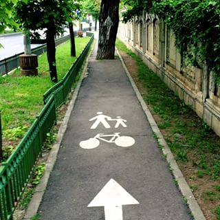 tree bike zone
